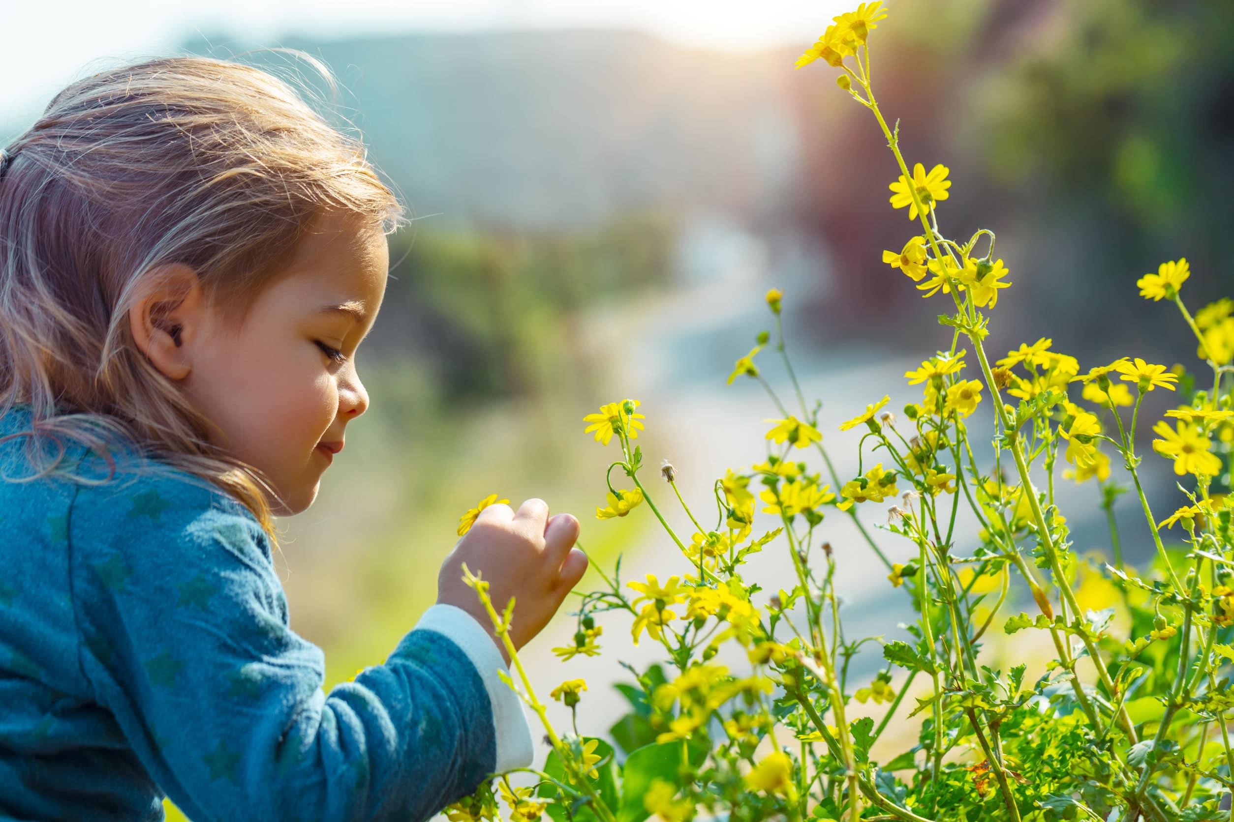 KleinerWald Waldkindergarten Waki Waldkindi Blog